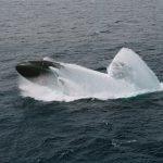 USS Columbus